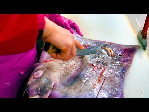 홍어찜 홍어회 Amazing Cute Fish Cutting & Seasoned Skate Seafood - Korean Food
