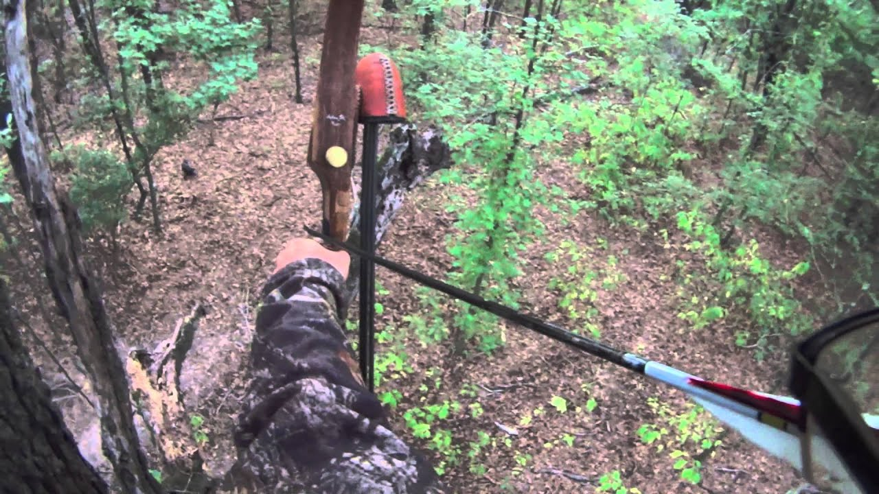 Two-blade or Three-blade Broadheads for Traditional Bowhunting ...