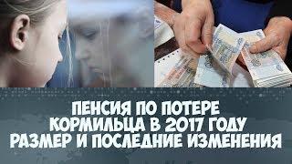 Пенсия по потере кормильца в 2017 году размер и последние изменения, кому положена, документы