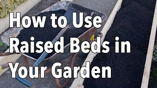 How To Use Raised Beds In Your Garden - Raised Bed Gardening