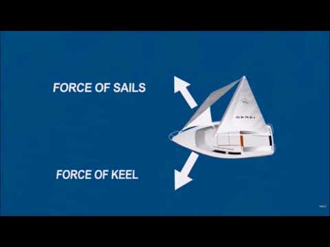 Advanced sail trim. Sailors are just drunk physics experts