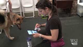 Dogs Learn New Tricks With The Ipad