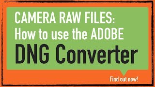 camera raw how to use adobe dng converter