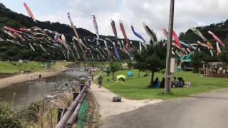奥 鯉のぼり祭り