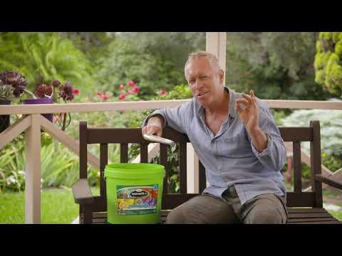 The Garden Gurus – Garden Health
