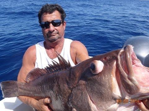 Pescaria Alto Mar - CHERNE, NAMORADO E CHUMBO - 09 De Março De 2014 - Equipe Beluga