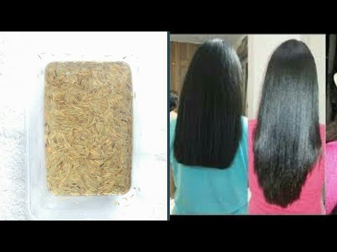 How to stop hair loss and grow long hair with Rosemary leaves