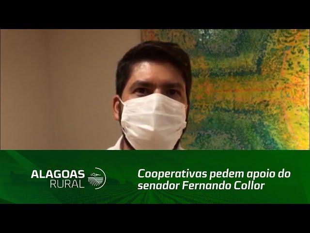 Cooperativas pedem apoio do senador Fernando Collor para continuidade do Programa do Leite