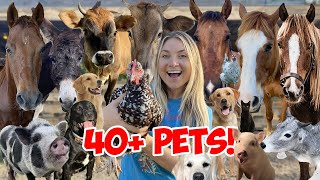 ALL MY ANIMALS In ONE VIDEO 2021!! 40+ Pets!