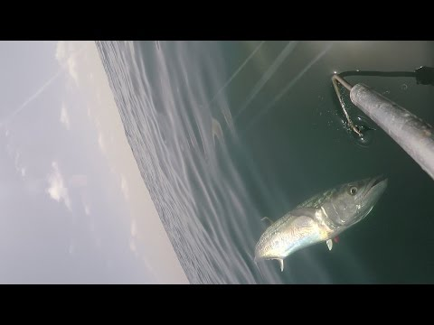 King Mackerel Fishing in the Kingbuster, Full Episode