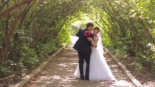 Олег и Альбина Свадьба 2014