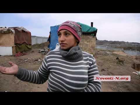 Видео Новости-N: Цыганка