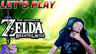 Been A Minute Letand39s Play Zelda Breath Of The Wild - Avidan Smith