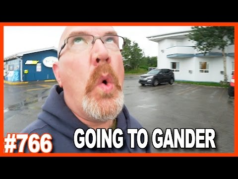 GOING TO GANDER Newfoundland Day 8