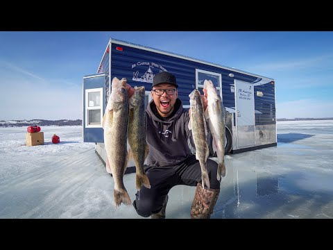 Winter Camping Walleye CATCH CLEAN COOK! (Off-Grid Cabin)