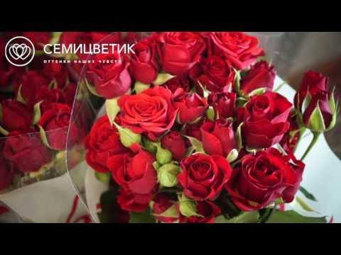 Обзор постувки: красные кустовые розы
