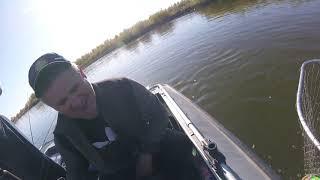 Рыбалка в Астрахани Бешеный клев судака