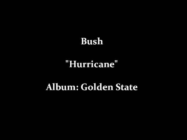 bush-hurricane-agentbeagle