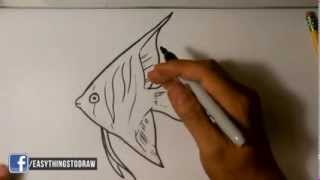How to Draw an Angel Fish- Easy Drawings