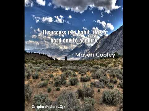 Mason Cooley: If success is a habit, it is a hard one to acquire....
