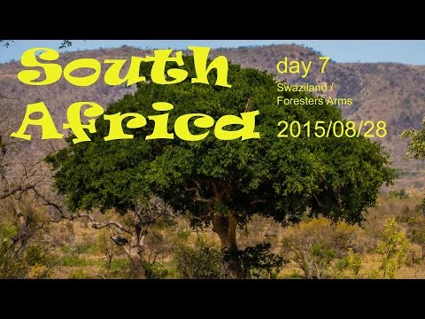 South Africa - on our way to Swaziland   Vlog