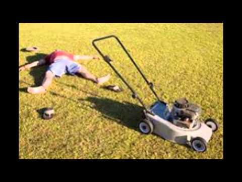 Key West Best Lawn Care | Lawn Maintenance in Key West FL