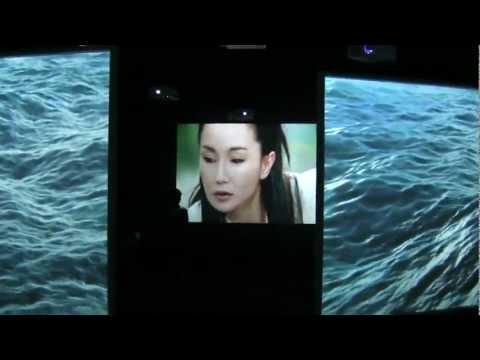 Isaac Julien: Ten Thousand Waves - nine channel video installation