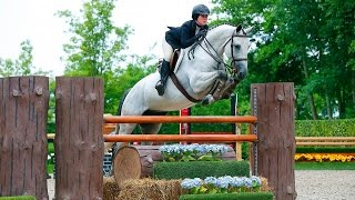 Armani - Equitation Prospect (SOLD)