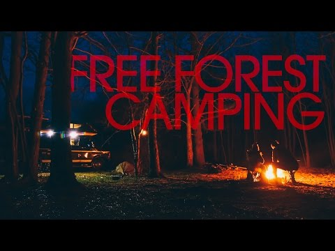 Free National Forest Dispersed Camping - Van Life 125