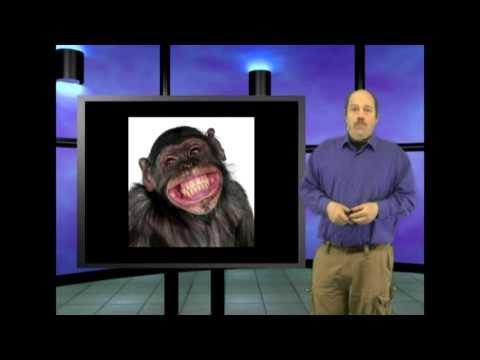 Walk like an ape?  This is Genesis Week, Episode 34, season 2, with Wazooloo/Ian Juby