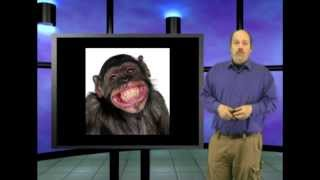 Walk like an ape? This is Genesis Week, Episode 34, season 2, with Wazooloo/Ian Juby by wazooloo