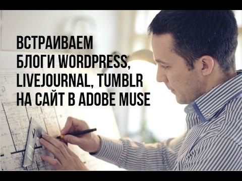 Блог создан на wordpress