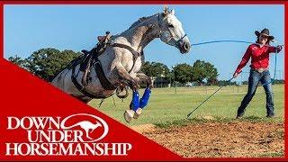 Clinton Anderson: Method Ambassador Alicia Minnich - Downunder Horsemanship