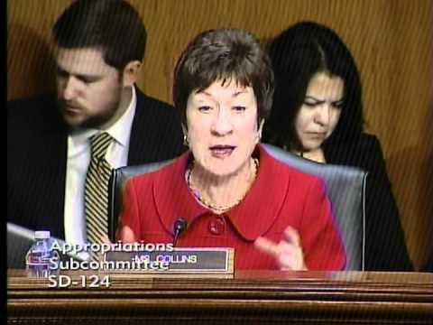 Senator Collins