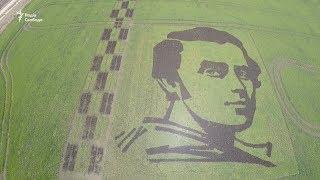 Портрет Шевченка з рису
