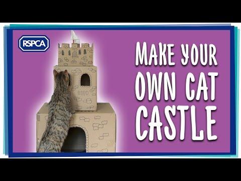Make a Cat Castle!