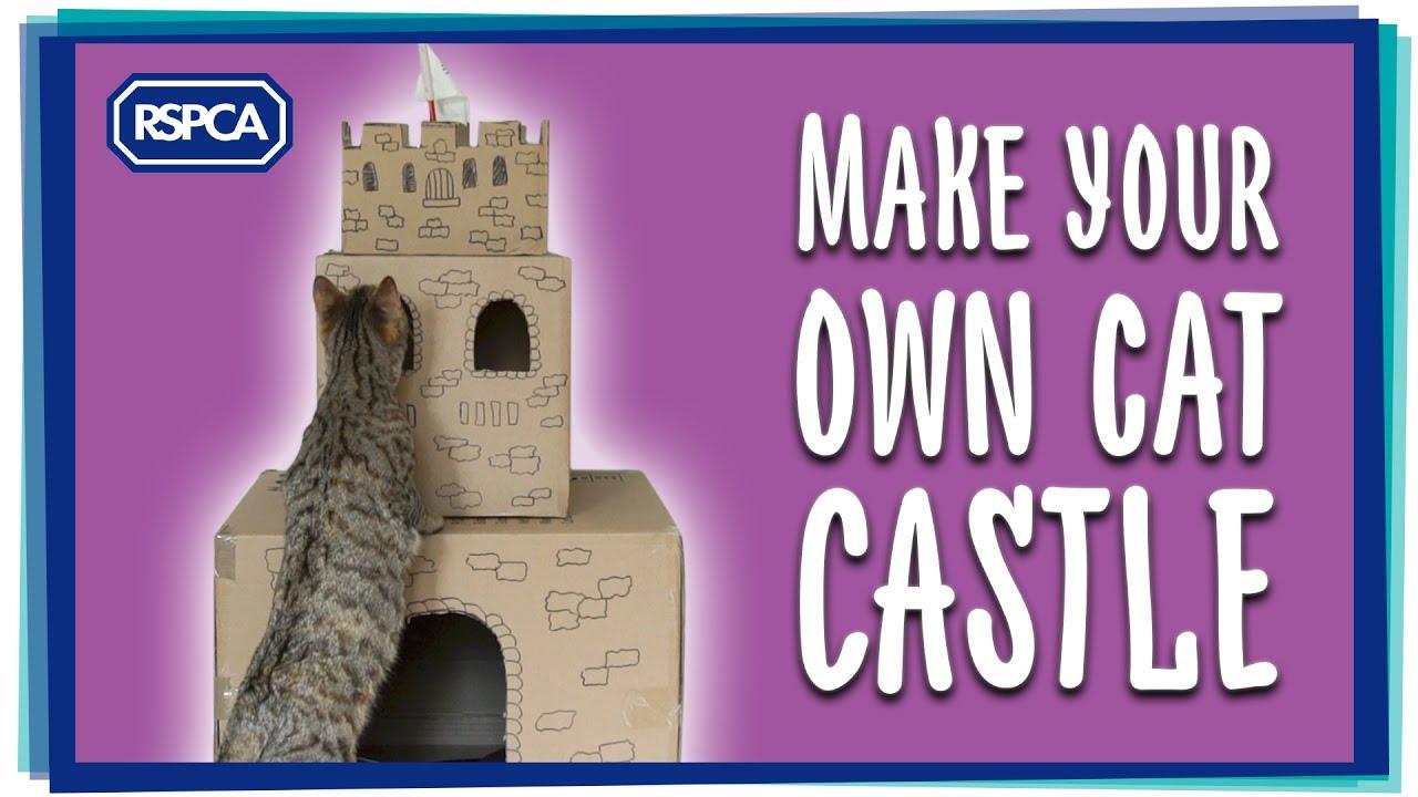 Make A Cat Castle Youtube