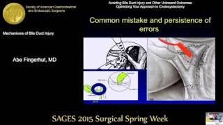 Mechanisms of Bile Duct Injury