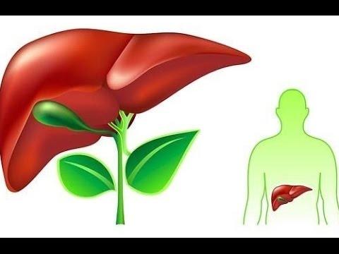 Гипотиреоз симптомы, причины болезни, фото, признаки