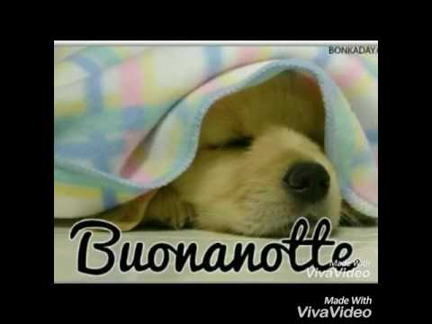 Buonanotte amici miei youtube for Video gratis buonanotte