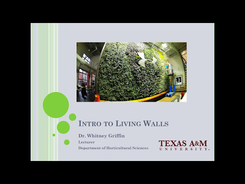 2017 05 10 11 05 Intro to green walls