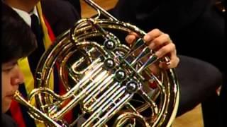 Tchaikovsky - Marche Slave, Op. 31 / Colombia-Venezuela Binational Symphony Youth Orchestra