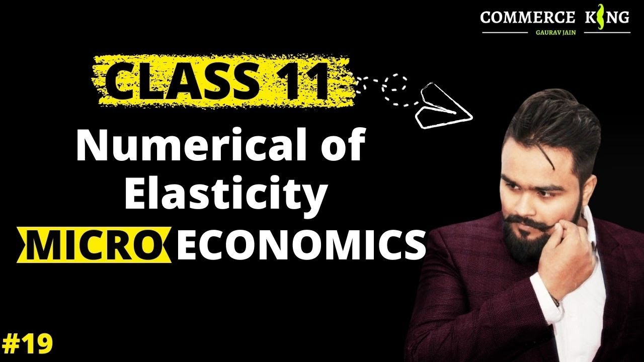 19 Numerical Questions Of Elasticity Of Demand Microeconomics