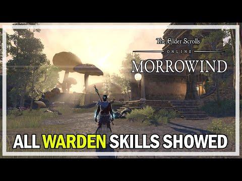 Eso Warden Skill Morphs