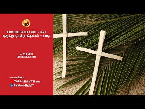 Roblox Jailbreak Mar 15 Lisbokate Live Hd Youtube Palm Sunday Mass 05 Apr 2020 Madha Tv Live