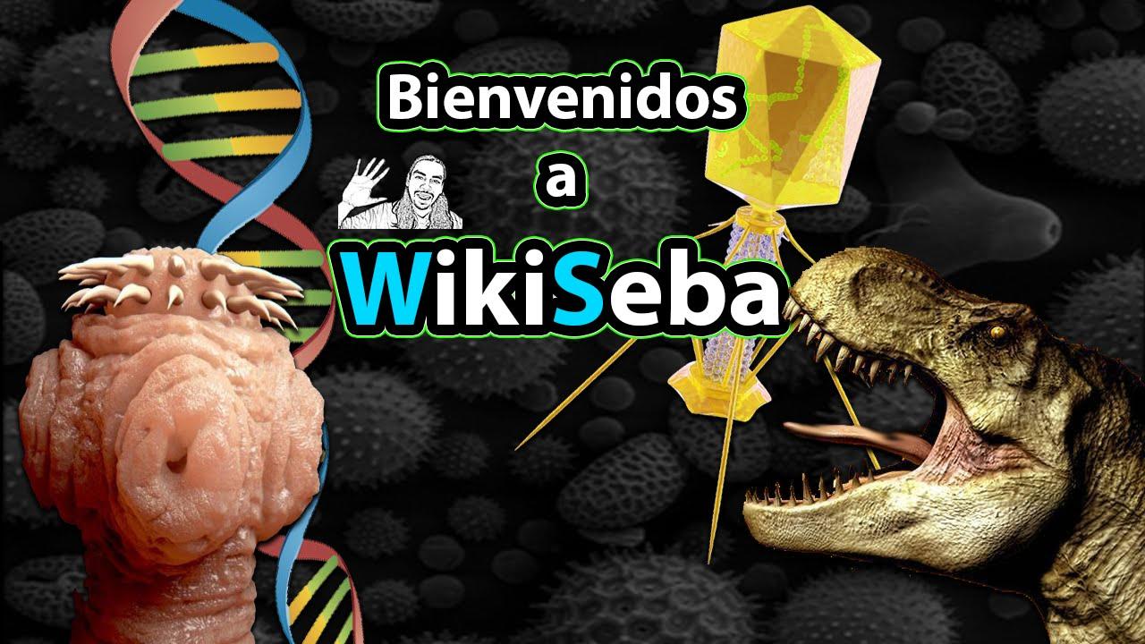 Bienvenidos a WikiSeba  (45 seg Trailer)