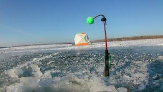 Первый лёд 2020 река Обь Рыбалка на комбайны такого клёва я ещё не видел
