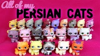 All of My LPS Persian Cats!