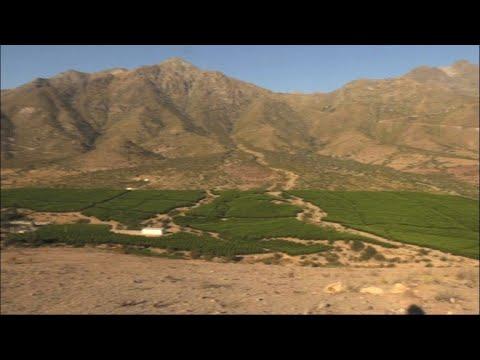 حمى الأفوكادو تفاقم أزمة المياه في تشيلي