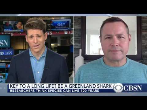 Greenland shark is world's longest-living vertebrate